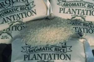 Plantation Rice