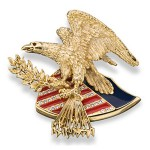 Ann Hand Eagle Pin