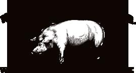 Whole Hog BBQ, Arkansas