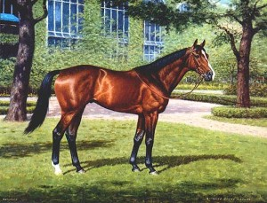 The Exceller Fund