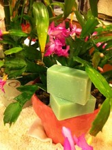 Hill's Handcrafted Soap
