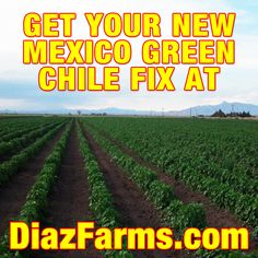 Diaz Farms