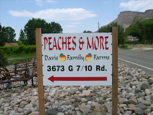 Davis Family Farms