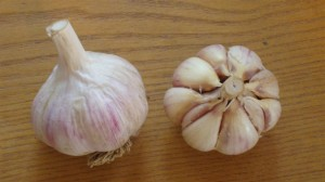 Salvere Farm Garlic