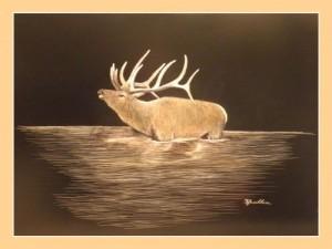 Cullum's Wildlife Art StateGiftsUSA.com/made-in-colorado