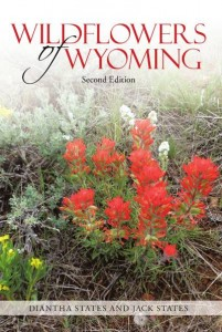 Wildflowers of Wyoming StateGiftsUSA.com/made-in-wyoming