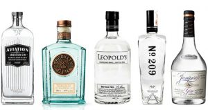 Gin of the Month Club StateGiftsUSA.com