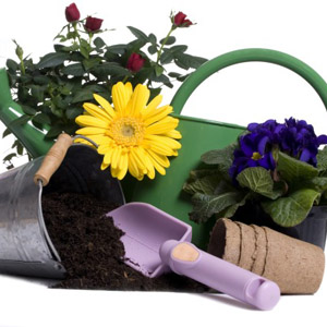 Gardeners Gift of the Month Club StateGiftsUSA.com