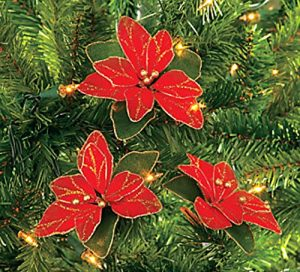 National Poinsettia Day StateGiftsUSA.com