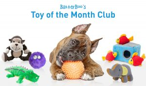 Dog Toy of the Month Club StateGiftsUSA.com
