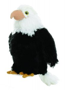 National Eagle Day StateGiftsUSA.com